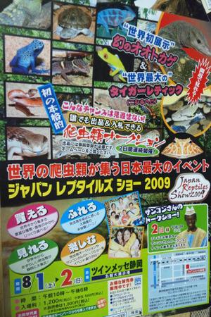 Jrs2009_2