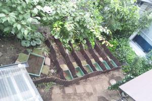 Garden44_2