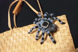 Tarantula3