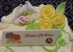 Bd_cake_oct312