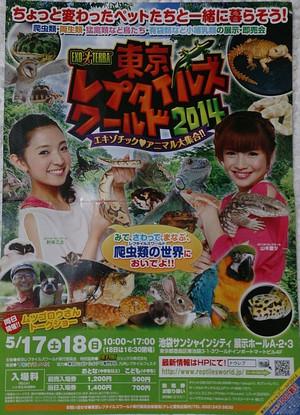 2014may171_tokyo_rep