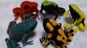 Frog_2014jun274