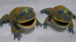 Frog_2014jun277