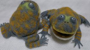 Frog_2014jun278