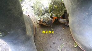 20160518_135041