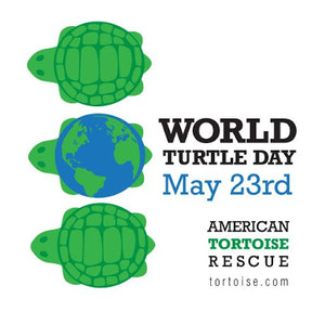 Worldturtledayatr