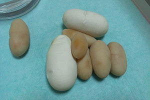 2012_chocolate_eggs3